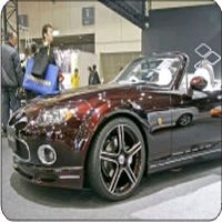 Exotic/Luxury Cars = Maintenance and Upkeep